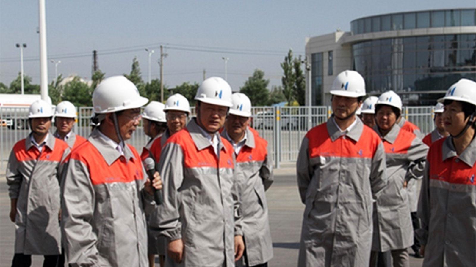 Esteemed visitors to Hanas New Energy in 2014